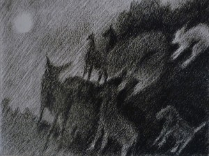 s04-008Animaux-Aufildelacouleur-pf